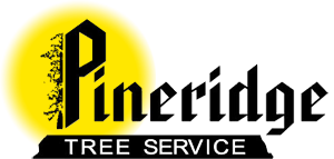 Pineridge Tree Service Logo